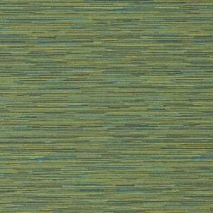 465964/007